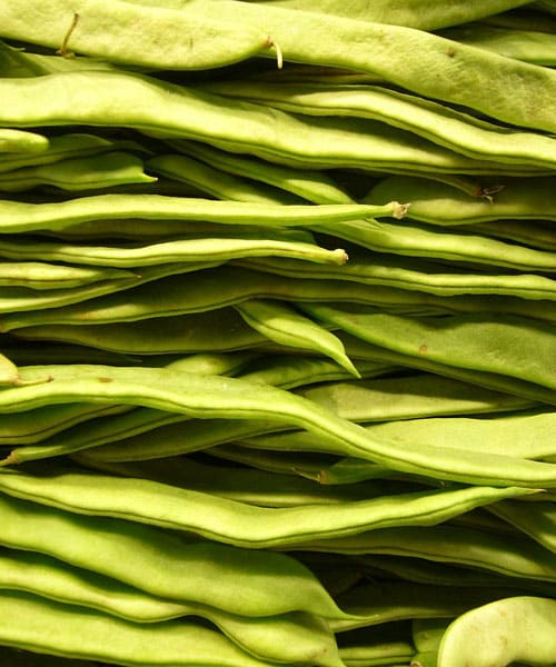 Cooking Green Beans: Boiling