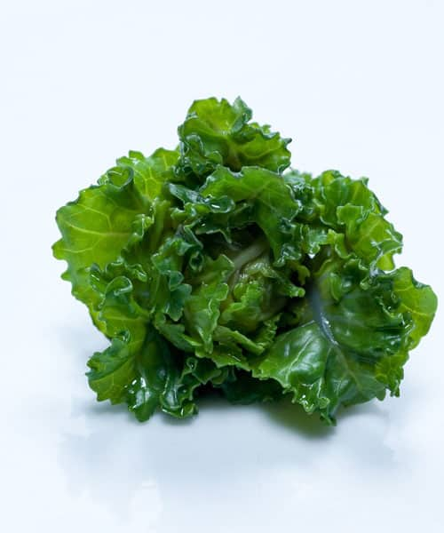 Cooking Kale: Recipes That Will Have You Craving More