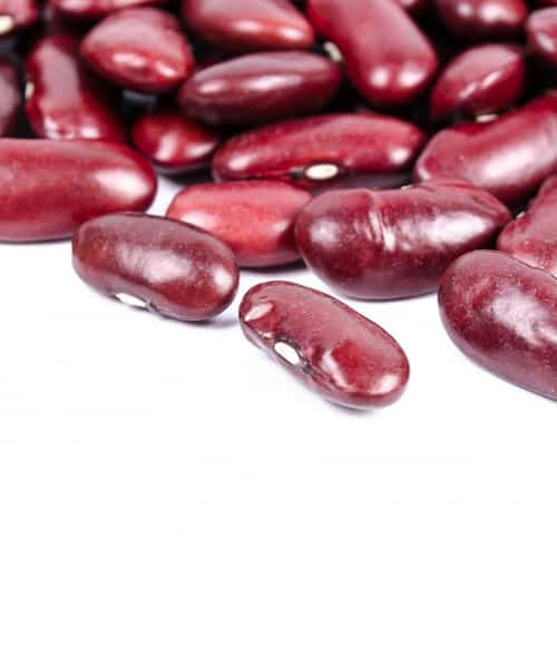 Preparing Your Dried Beans for Cooking