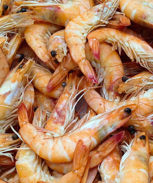 Cooking Shrimp: How to Avoid Easy Mistakes